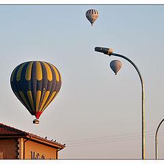 "фото ""Turkish-2"""