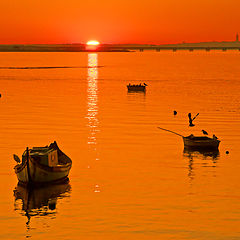 """фото """"Estuary Sunset"""""""