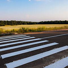 "photo ""Pedestrian crossings among the fields"""
