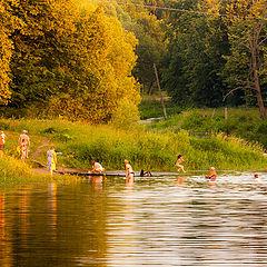 "photo ""Evening swimming"""