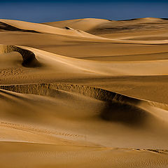 """photo """"Waves of Sand"""""""