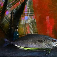 """album """"натюрморт, рыба"""""""