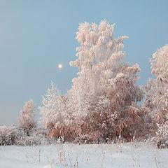 """фото """"Лунное утро"""""""