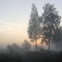 """фото """"Утро осени"""""""
