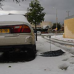 "photo ""The victim of snow storm..."""