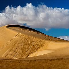 """photo """"Golden Dunes"""""""
