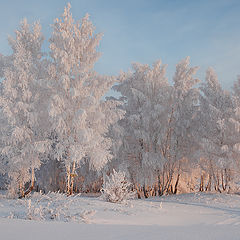 "фото ""По дороге в зимнее утро января."""