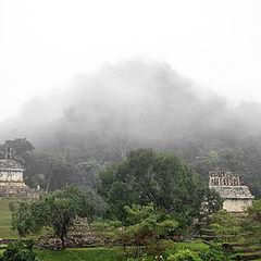 """фото """"туман в Паленке. Гватемала"""""""