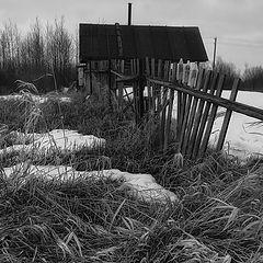 """фото """"Про старую изгородь"""""""