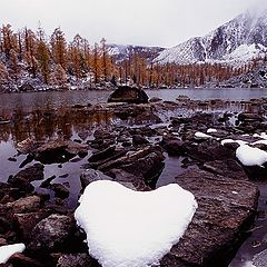 """фото """"Fall snow"""""""