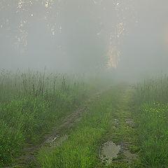 "фото ""Вечерняя после дождя"""