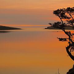 """фото """"Зачарованное утро на далеких берегах."""""""