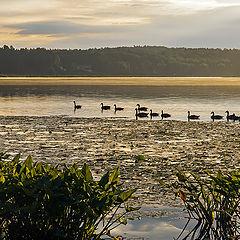 """фото """"Утро на озере Онейда"""""""
