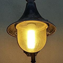 """фото """"Street Lamp"""""""