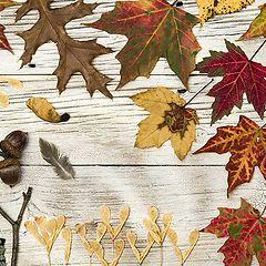 """фото """"Вот и осень..."""""""
