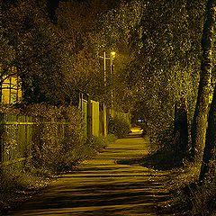 "photo ""Street at night"""