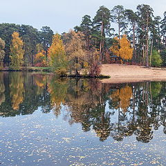 "photo ""fall in park"""