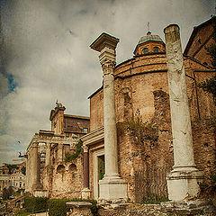"photo ""Rome 4388"""