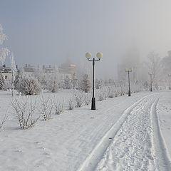 """фото """"Снежный октябрь"""""""