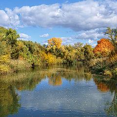 """фото """"Жёлтые листочки плыли по воде…Осень"""""""