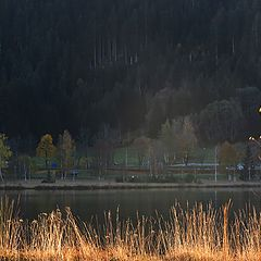 """photo """"2 берега озера"""""""