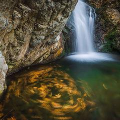 """фото """"Осенний водоворот"""""""
