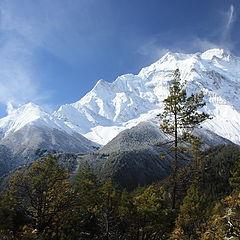 "фото ""Гималаи"""
