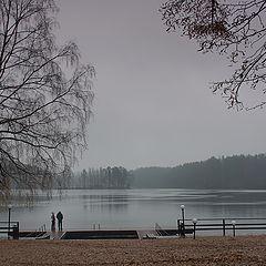 "photo ""Frozen November"""