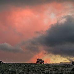 "photo ""Закат, Осень."""