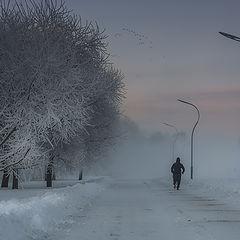 "photo ""My winter sleeping city"""