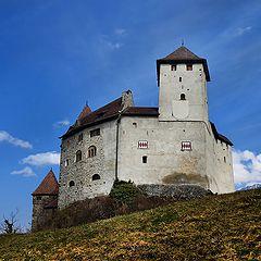"""фото """"замок Гутенберг"""""""