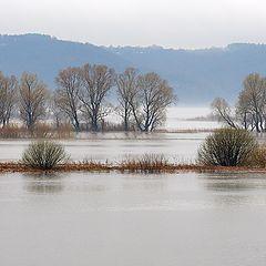 """photo """"Flooding on the Volga"""""""