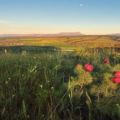 """фото """"Вид на деревню Константиновку."""""""