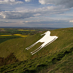 "photo ""Westbury White Horse"""