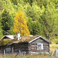 "фото ""Old mountain farm..."""