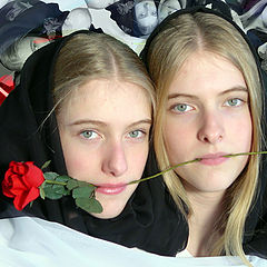 """фото """"Joined by a rose"""""""