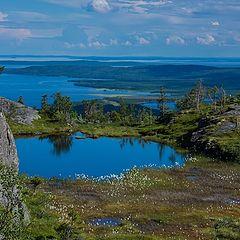"photo ""The hanging swamps of Karelia"""
