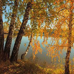 """фото """"Осенним утром на берегу реки Ия."""""""