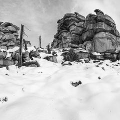 """photo """"Первый снег в этом году"""""""