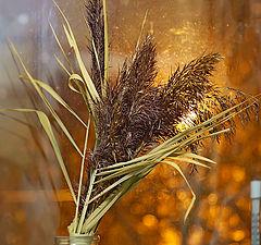 """photo """"Window in autumn"""""""