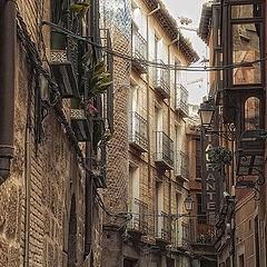 """фото """"Toledo"""""""