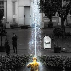 """фото """"""""Капризный"""" Петергоф"""""""