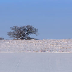 """фото """"Акварели по морозцу ..."""""""