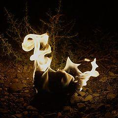 """фото """"Танец огня"""""""