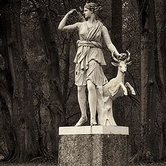 "photo ""Diana - The goddess of the hunt"""