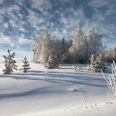 """фото """"Морозные кружева облаков"""""""