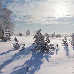 """фото """"Зимние тени"""""""