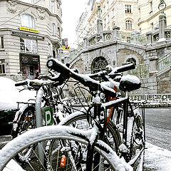 """photo """"Зима в Вене"""""""