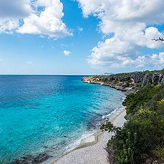 "фото ""Bonaire  island,  Caribbean"""
