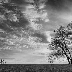 """photo """"Der Radfahrer"""""""